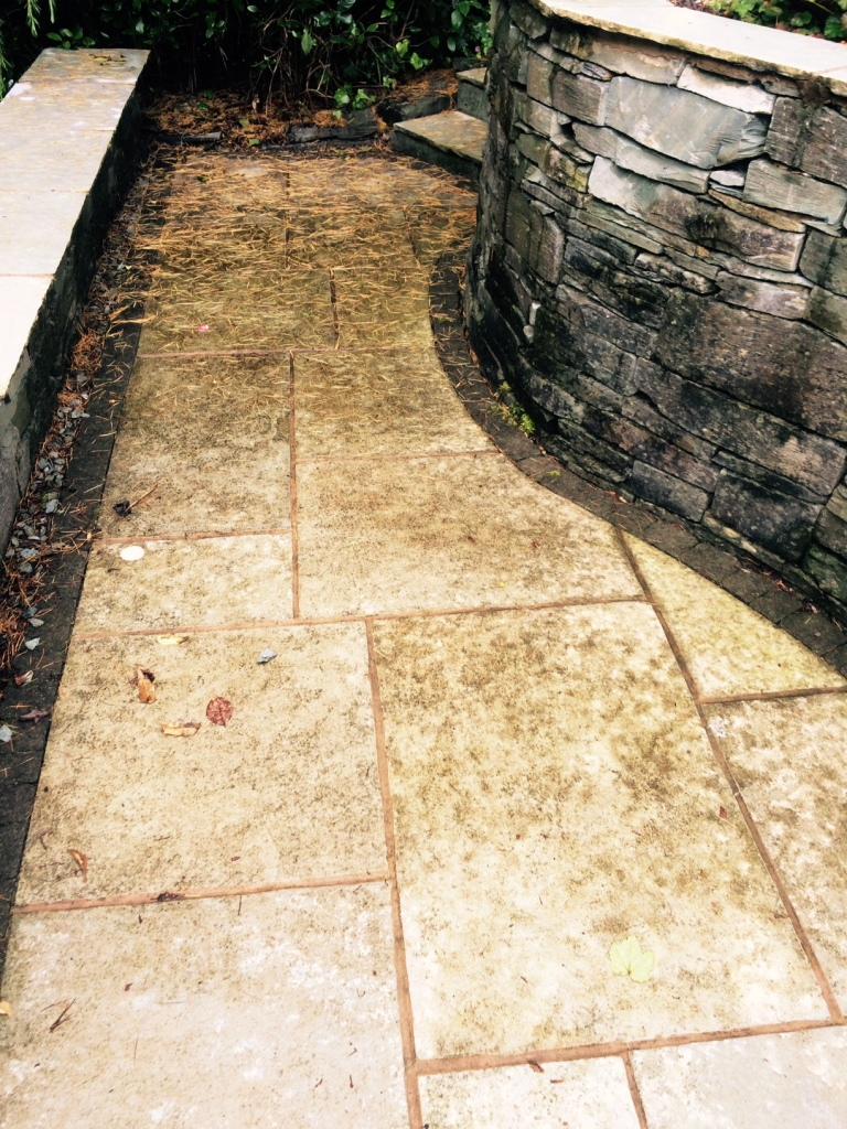 Indian limestone patio Windermere before cleaning