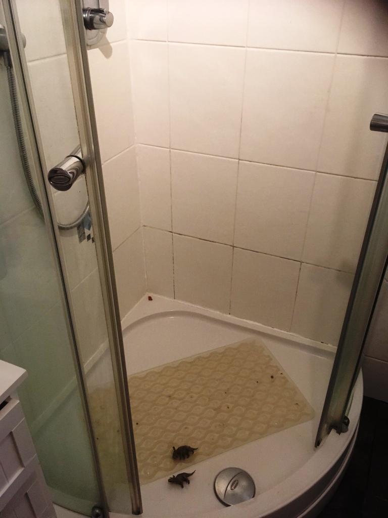 Shower Cubicle Before Restoration Kendal